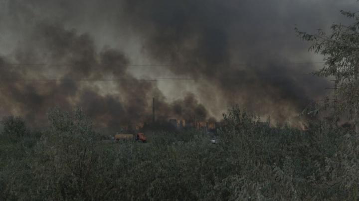 Пожар в Кумженской роще тушат 80 человек