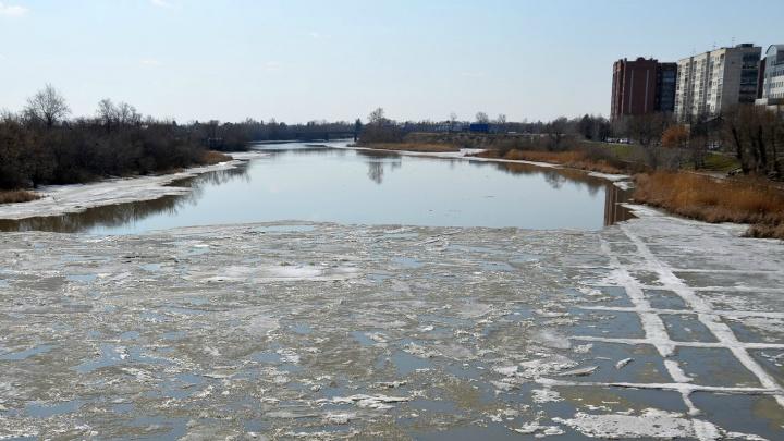 Паводок идет в штатном режиме. Уровень Тобола у Кургана составляет 342 сантиметра