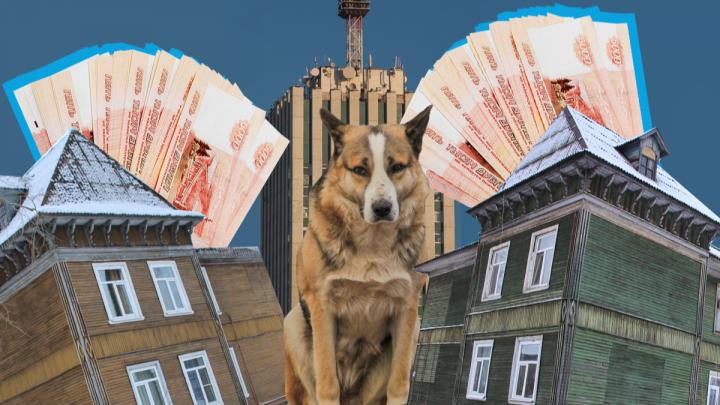 «Такой бюджет принимать — себя не уважать»: о чём спорили депутаты, обсуждая деньги для Архангельска