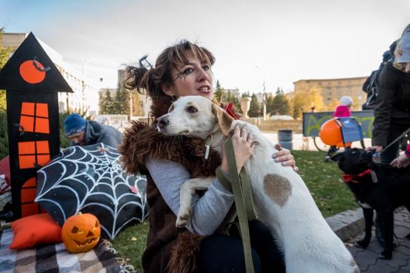 Тематикой акции стал предстоящий праздник Хеллоуин