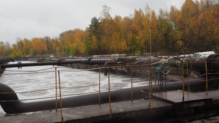 Экология и производство: ПЦБК ввел в эксплуатацию новое оборудование на очистных сооружениях