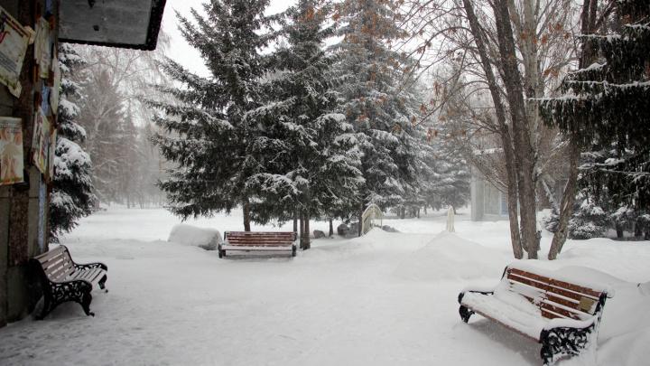 Омские синоптики спрогнозировали ветреную и снежную погоду в ближайшие два дня