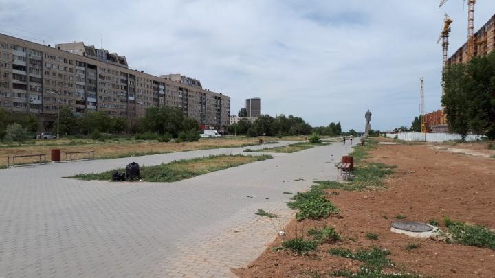 Раскритикованный парк «Юбилейный» на юге Волгограда украсят лавочками и фонарями