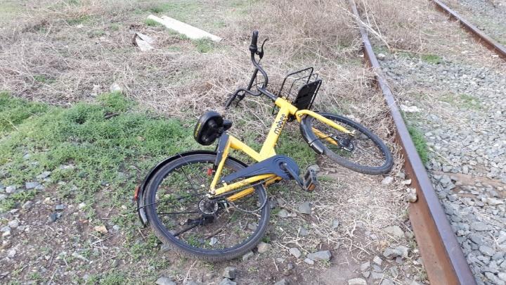 «Этих людей не победить»: волгоградцы продолжают раскидывать по кустам желтые велосипеды Mobee