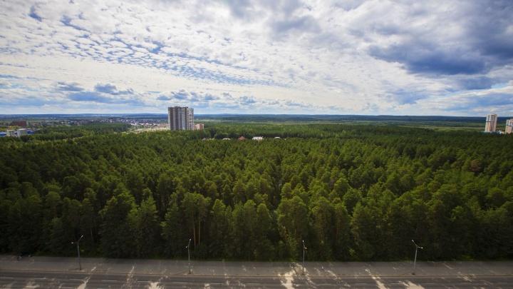 С видом на закат: в Краснолесье выставили на продажу жилье в самом высоком здании района