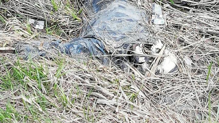 «Пролежал не меньше трёх месяцев»: что известно о скелете, найденном во время «Майской велопрогулки»