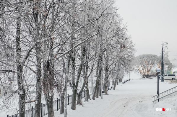 Погода ожидается не по-весеннему морозная