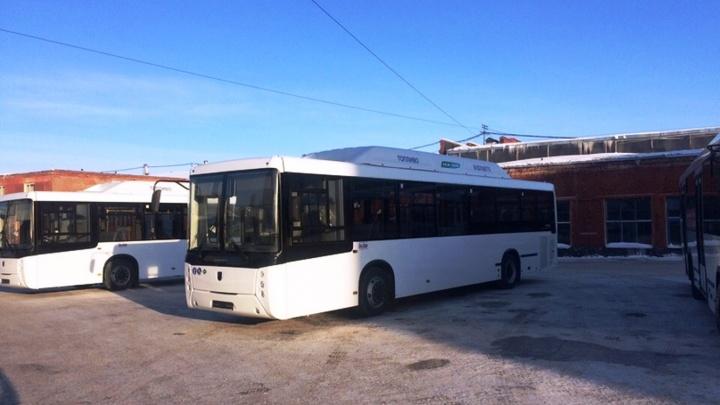 Омский перевозчик купил два больших автобуса на метане