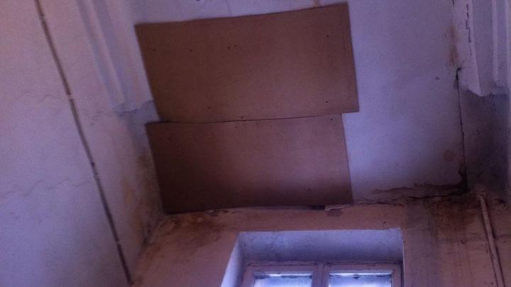 Ремонт будет нескоро: мэрия объяснила, почему протекающую крышу починили куском фанеры