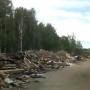 Растянулась на пару километров: в Ярославле нашли дорогу из мусора