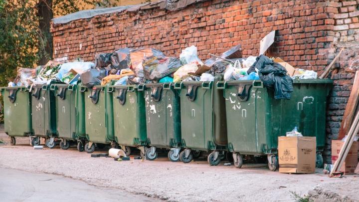 В Самарской области чиновники решили подсчитать, сколько мусора выкидывают жители