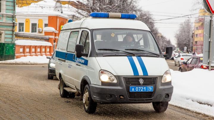 В Ярославле молодая мама избила полицейского: как её наказали