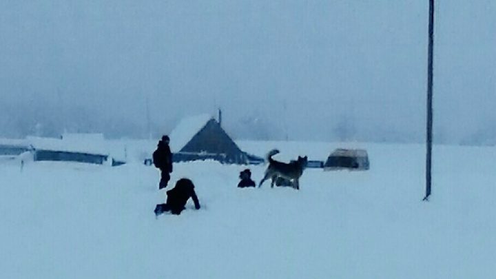 «Живем, как на необитаемом острове»: жители деревни в Башкирии пожаловались на отсутствие дороги