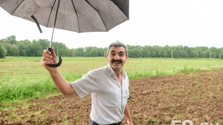 «Я доказал, что не вор»: краевой суд в Перми признал, что Армен Бежанян честно арендовал земли в Осе
