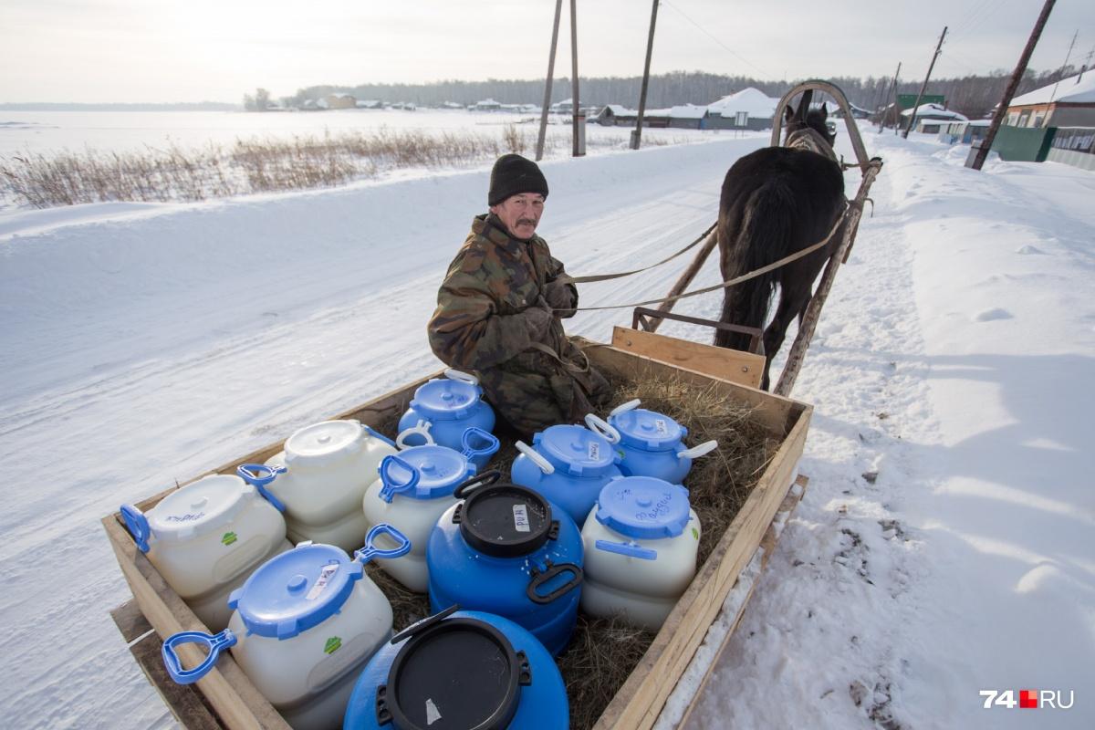 Молоко на сыроварню доставляют на лошадиной тяге на удивление быстро