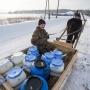 Тёлки, избы, сыроварня: куда пришёл проект бизнесмена, который возрождает родное село
