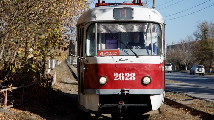Уезжают из Волгограда на лето: мэрия объяснила сокращение троллейбусов и трамваев
