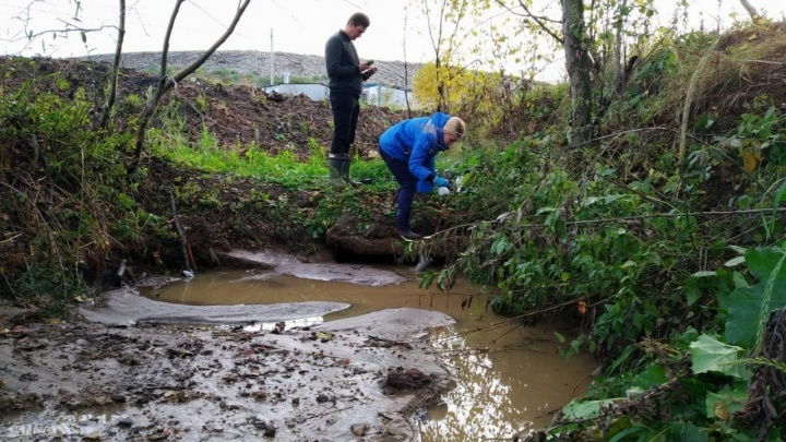 Это не Скоково: власти озвучили предварительную причину загрязнения реки Норы