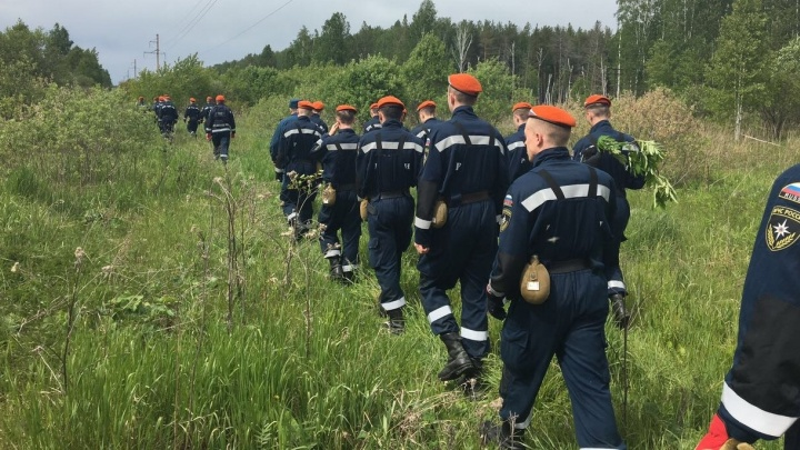В Свердловской области в лесу потерялись бабушка с 8-летним внуком