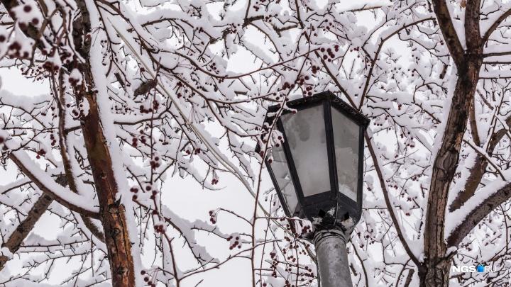Снегопад в Новосибирске побил рекорд 1987 года