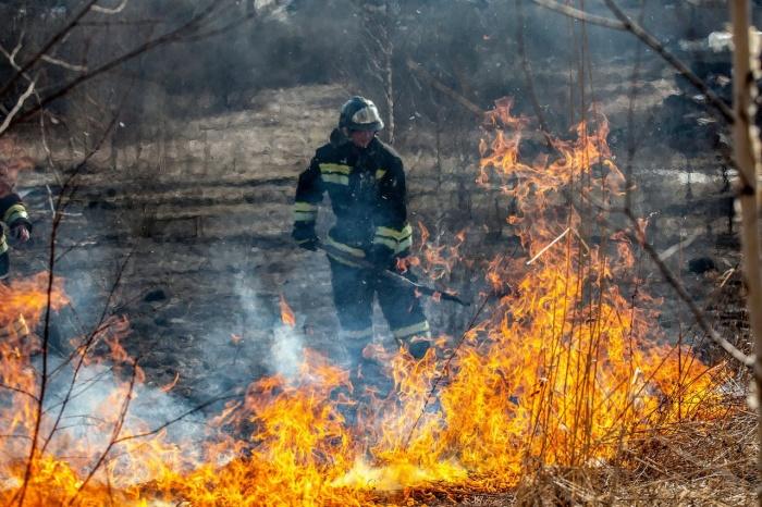 Больше всего пожаров случилось в Коченёвском районе области