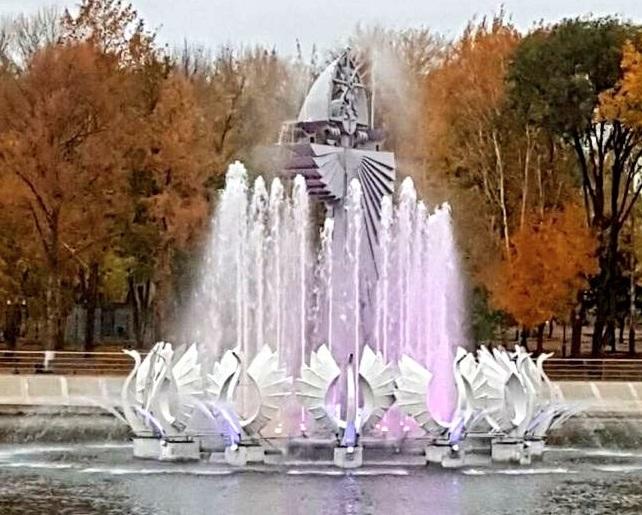 Лебедей подсветили розовым