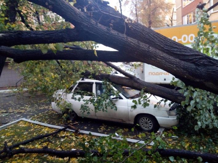 Вот, что может произойти во время непогоды. Не знаем, пострадал ли кто-то при падении дерева на машину, но автомобиль однозначно придется везти в ремонт