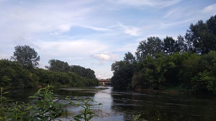 «Тело все еще ищут»: в Прикамье в реке утонула 13-летняя девочка