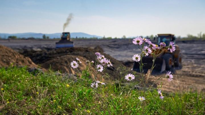 Золошлаковые материалы с тепловых станций СГК помогут восстановить красноярские земли