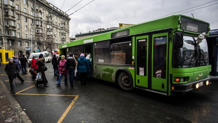 10 тысяч МАЗов и НефАЗов: Новосибирск обошел Екатеринбург по количеству автобусов