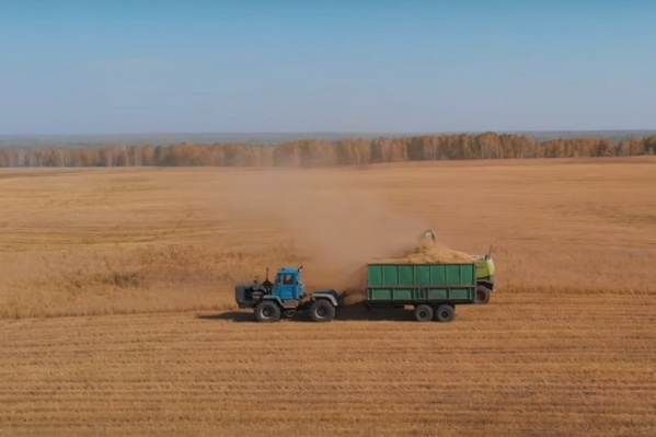Новосибирец показал красоту сибирской осени в видеоролике длительностью чуть меньше четырёх минут