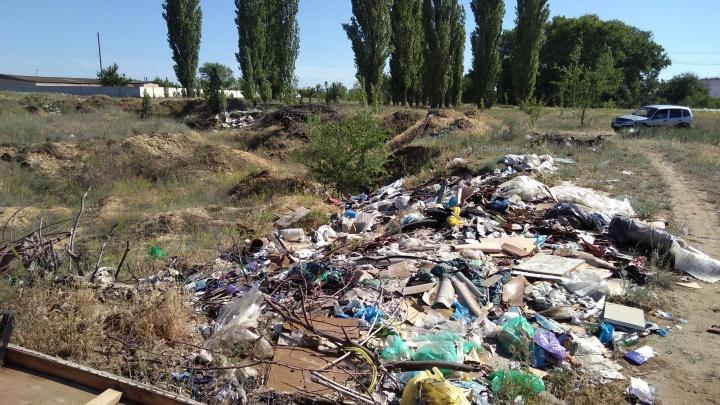 Ленивых чиновников Волгоградской области заставили прибраться на пяти свалках