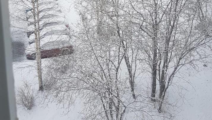Никогда такого не было, и вот опять: перед майскими праздниками в Свердловской области выпал снег