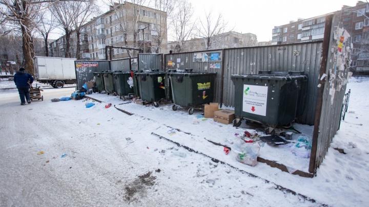 Деньги — на «выброс»: для челябинцев установили тариф за вывоз мусора