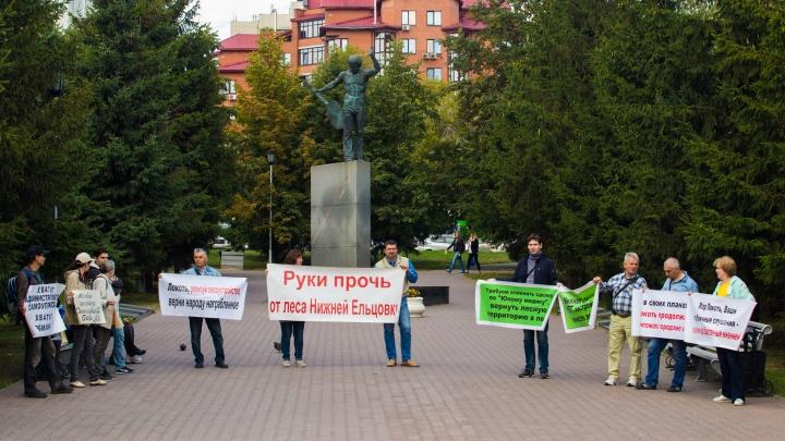 Жители Нижней Ельцовки вышли на пикет против стройки в уникальном бору