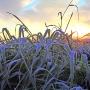 В Башкирию придут трескучие морозы: синоптики прогнозируют арктический холод