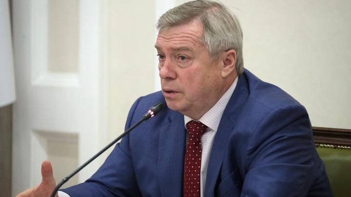 Правительство Ростовской области опровергло отставку губернатора