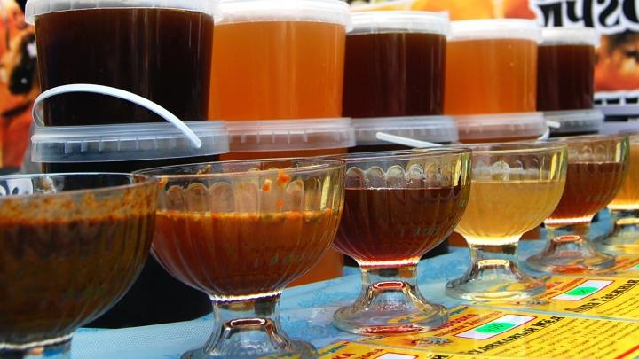 Не слипнется: власти заказали 400 банок мёда в банках с гербом Новосибирской области
