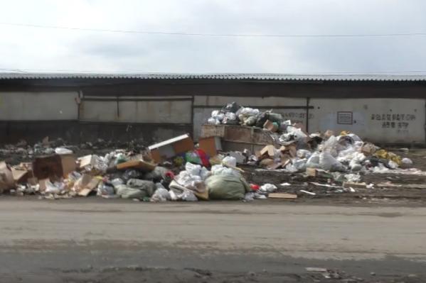 Жители улицы Панфиловцев пожаловались на стихийную свалку