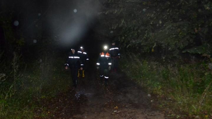 В Уфе женщину, заблудившуюся ночью в лесу, искали три часа