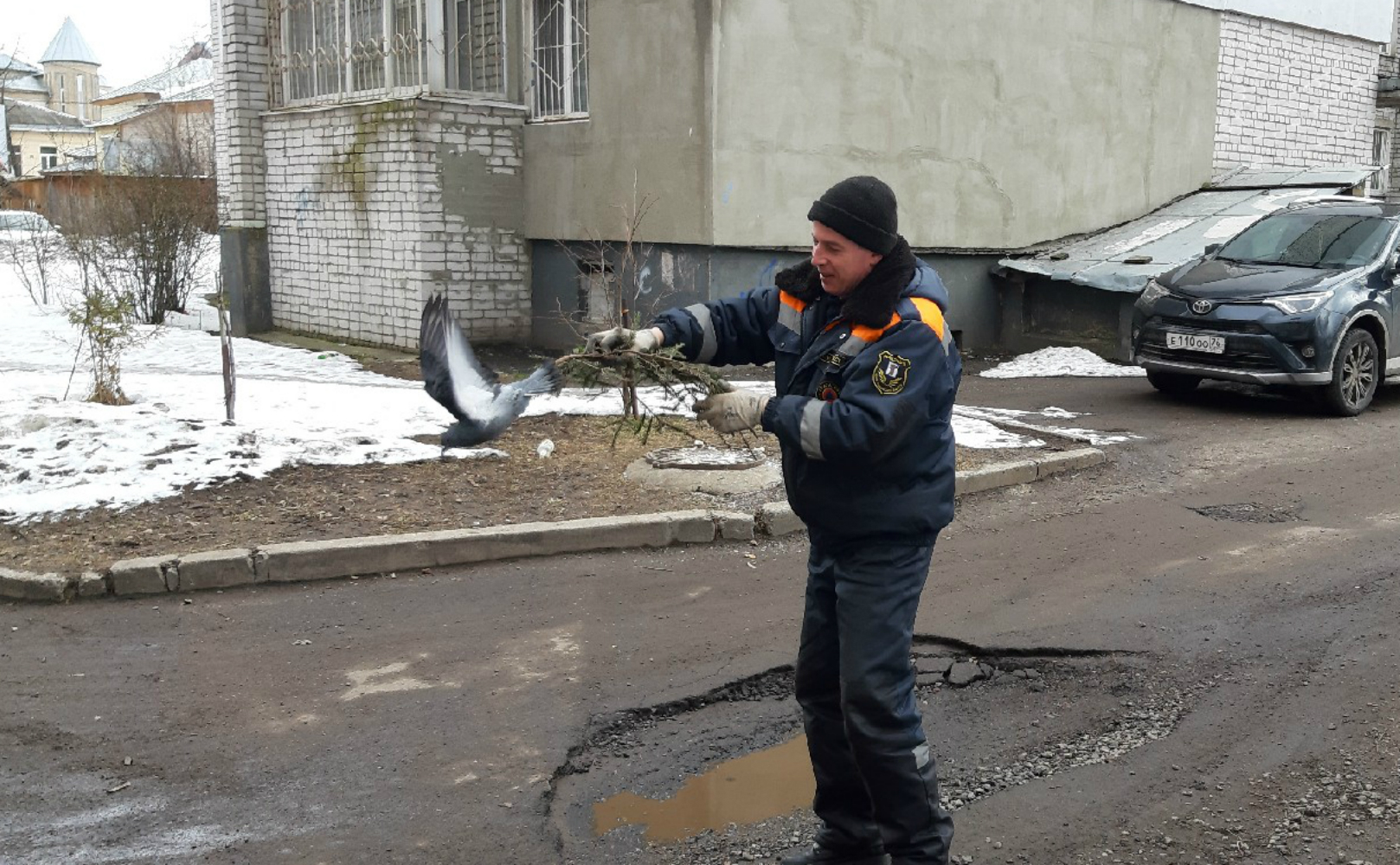 Спасатели быстро поймали голубя