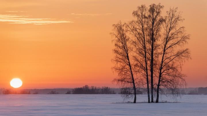 Снимок тёплого зимнего заката под Новосибирском попал в топ престижного конкурса
