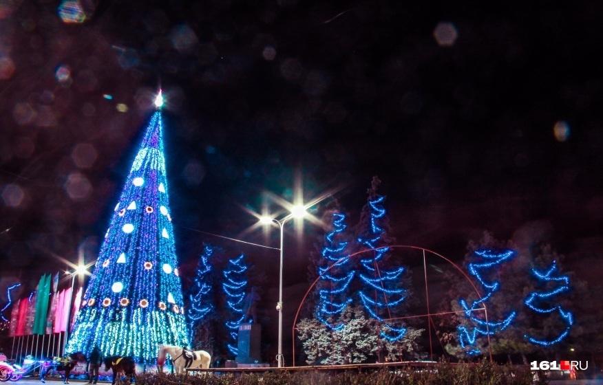 Главную новогоднюю елку города поставят там же, где и в прошлом году
