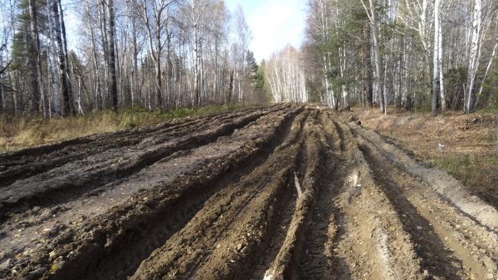 Директор компании создал видимость ремонта дорог после паводка. Его обвинили в краже 40 миллионов