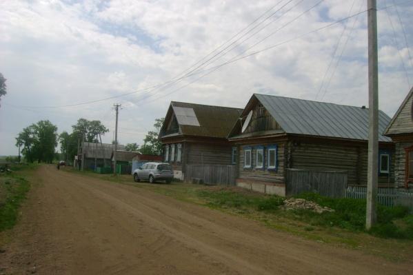 Так выглядит деревня летом