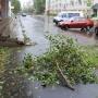 Завтра в Архангельскую область придёт шторм