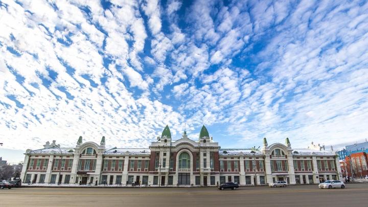 Война с пылью, памятник Кацу и светящийся куст: 10 крутых идей новосибирцев к юбилею города