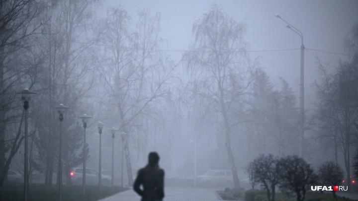 Сильный ветер и мокрый снег: в Башкирии ухудшится погода