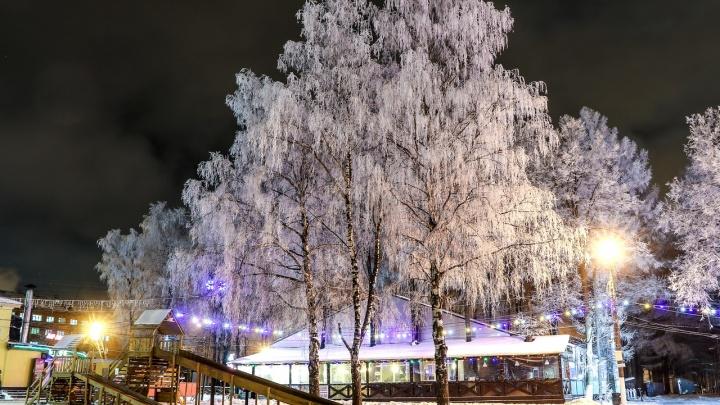 Нижегородцам предложили обсудить концепцию игрового комплекса в парке «Швейцария»