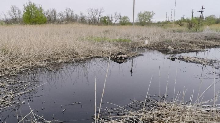 Это ядовитая щелочь: ущерб от грязи в Тракторозаводском районе оценили в 30 миллионов рублей